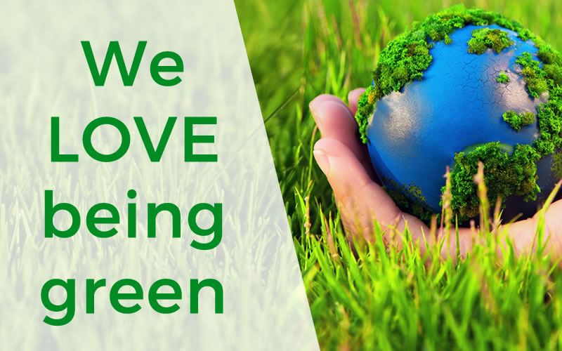 Wildeye Green Web Hosting
